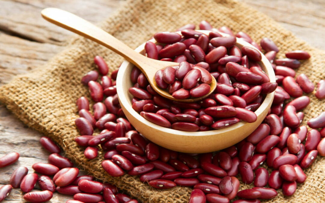 All you need to know about Rajma